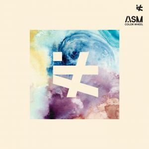 ASM - A STATE OF MIND - COLOR WHEEL